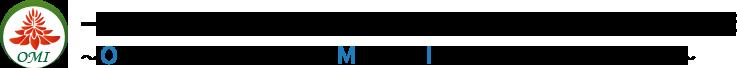 一般財団法人 沖縄国際メディカルアイランド研究機構